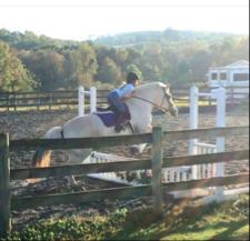 glb_equestrian Cover Photo