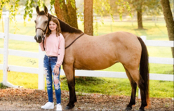 equinemary Cover Photo