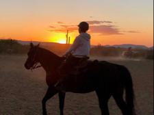 horsegirl2069 Cover Photo